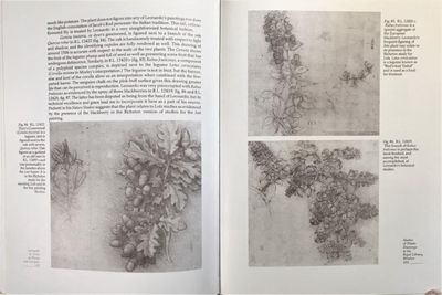Image for Leonardo da Vinci on Plants and Gardens. Foreword by Carlo Pedretti.