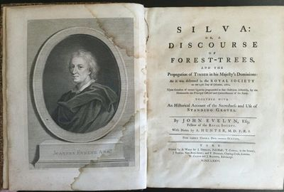 Image for Silva: or, a discourse of forest-trees, and the propagation of Timber in his Majesty's Dominions: . . . Together with an historical account of the sacredness and use of standing groves.